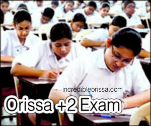 Orissa Plus Two Examination from March 2