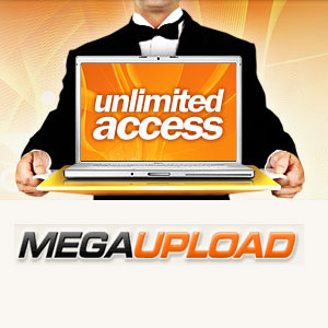 US shuts down file-sharing site Megaupload.com