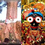 Nabakalebar of Jagannath