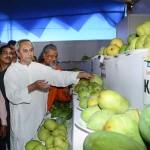 Bhubaneswar Fruit exhibition
