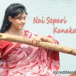 Nai Separi Kanaka Gori Video Songs
