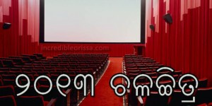 2013 odia movies