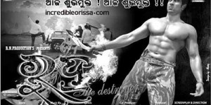 odia films released on 17 may 2013
