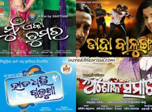 oriya films in 2013 raja