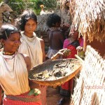 tribals-in-orissa3