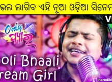 Bholi Bhali Dream Girl song