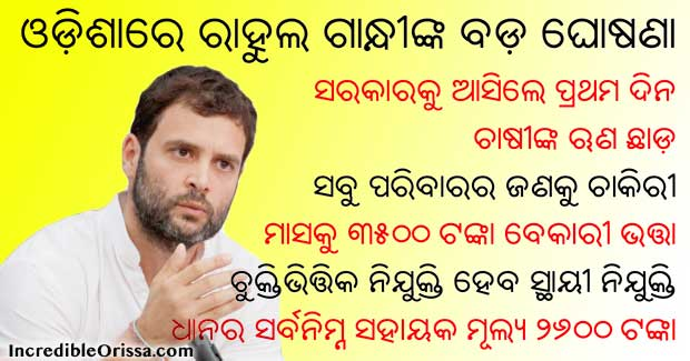 Congress Guarantee Card Odisha