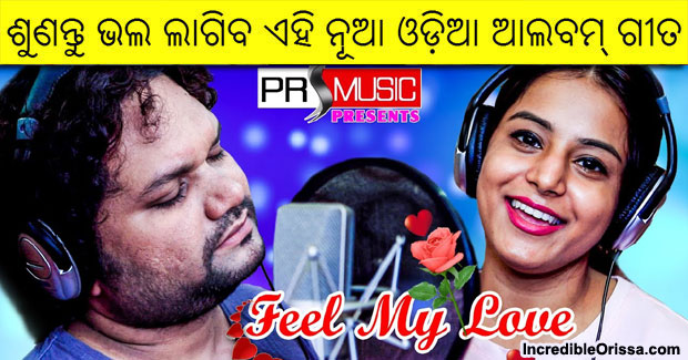 Feel My Love odia song