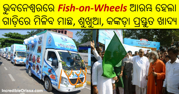 Fish-on-Wheels Bhubaneswar