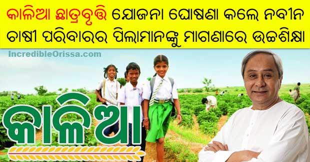 KALIA Chhatra Bruti Scholarships