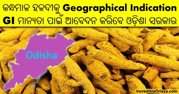 Kandhamal turmeric GI tag