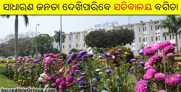 Odisha Secretariat flower garden