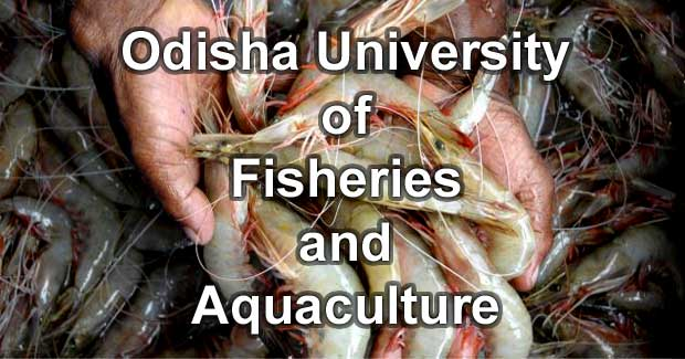 Odisha University of Fisheries and Aquaculture