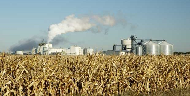 Ethanol Plant in Odisha