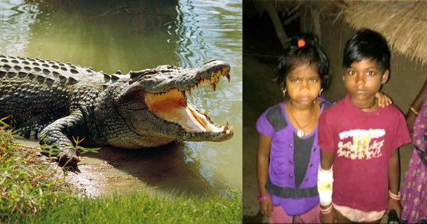 Odisha girl saves elder sister from crocodile