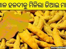 Kandhamal Haldi GI tag