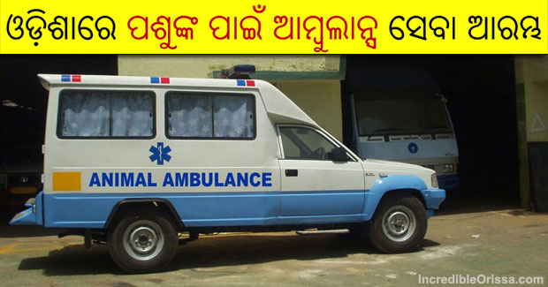 Odisha ambulance service for animals