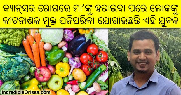odisha pesticide and chemical free vegetables