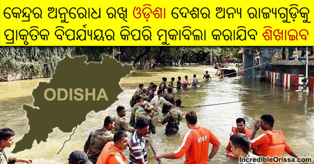 odisha disaster management