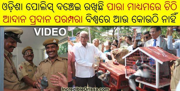 odisha police pigeon carrier service