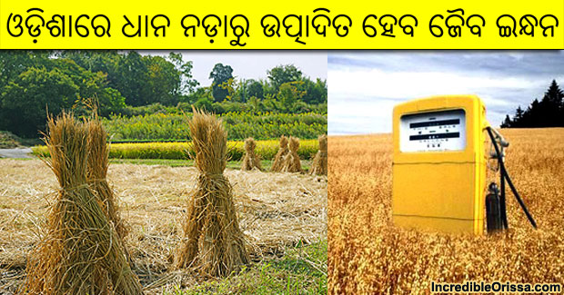 Rice straw based bio-fuel production in Odisha